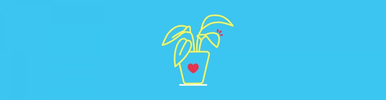 Plants Feelings Interaction Design