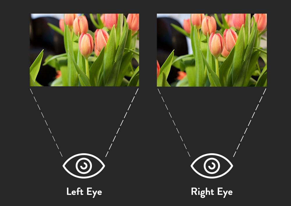 Photo showing what the left and the right eye sees