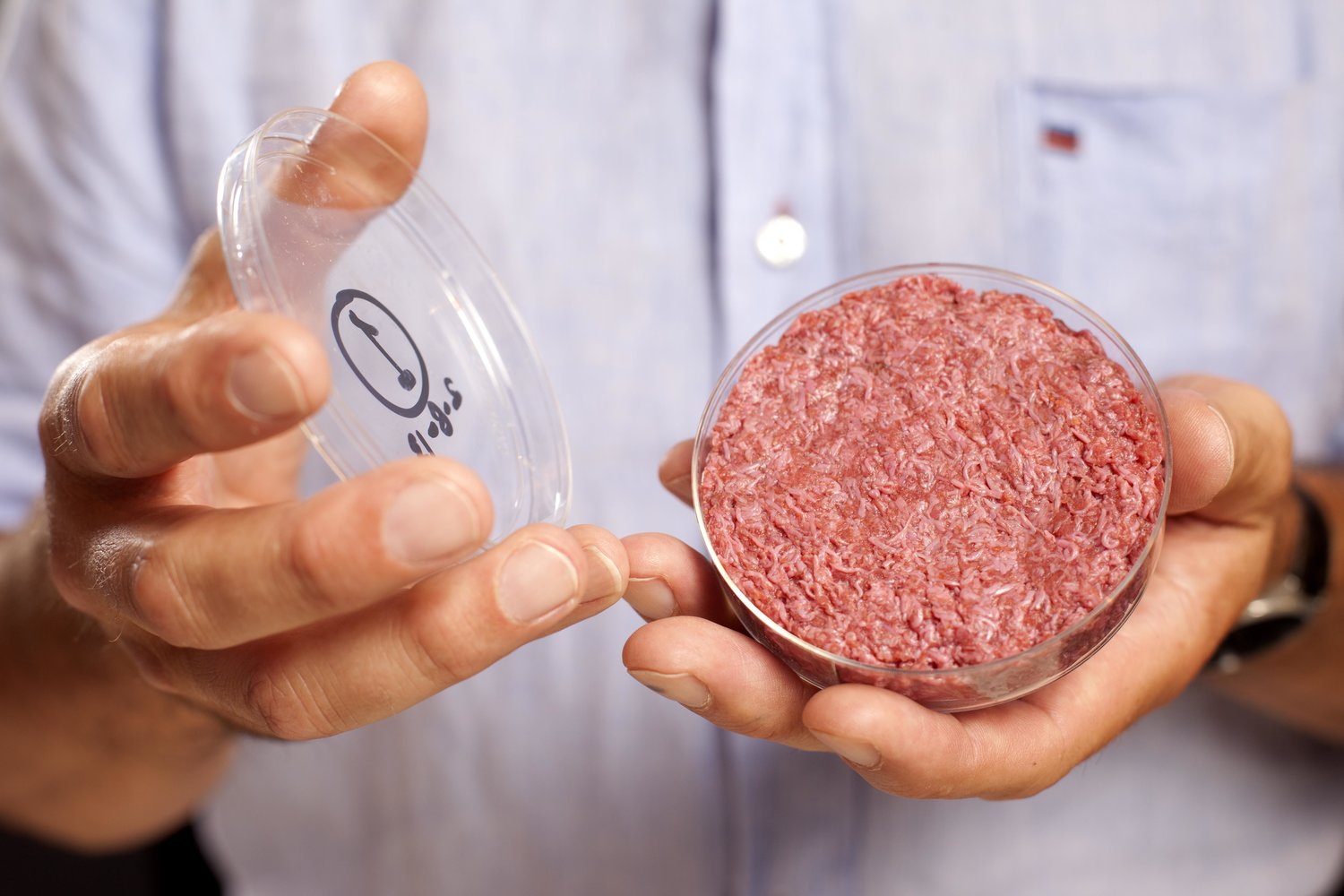 A burger made from Cultured Beef, which has been developed by Professor Mark Post of Maastricht University in the Netherlands.<br /> PRESS ASSOCIATION Photo. Issue date: Monday August 5, 2013.<br /> Cultured Beef could help solve the coming food crisis and combat climate change. Commercial production of Cultured Beef could begin within ten to 20 years.